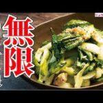 無限生チンゲン菜